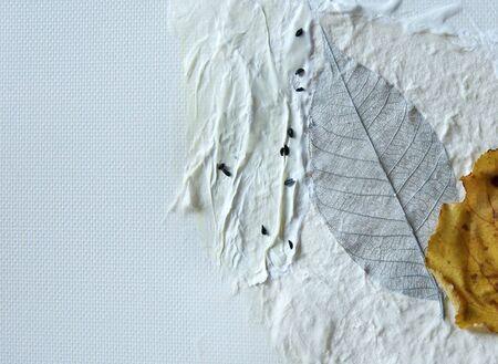 detalle de collage de papel hecho a mano, semillas y hojas secas  Foto de archivo - 5976836