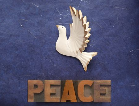 white dove against a blue sparkly background with the word peace in old wood type photo