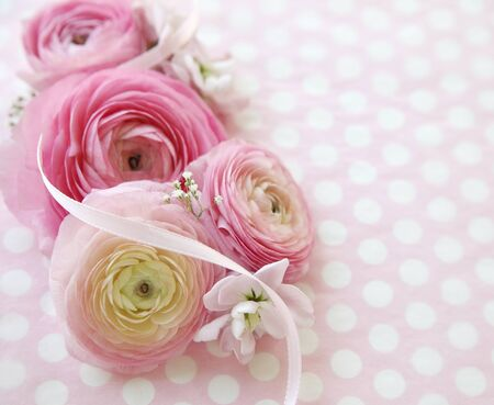 lowers: ranunculus flowers on polka dot background