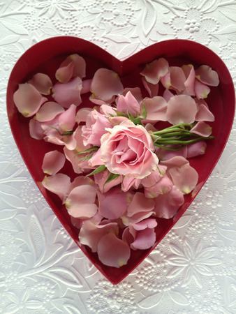 miniature pink roses and loose petals in a heart box