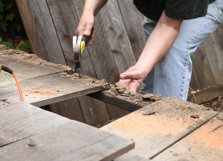 A man takes apart an old fence in his backyard. Stock Photo