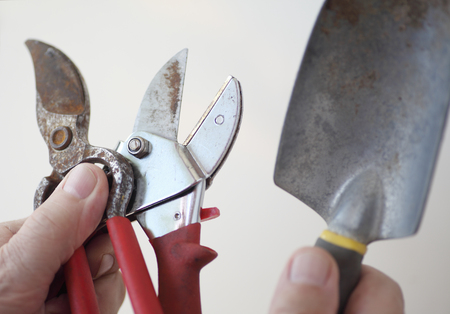 clippers: A man holding well-used plant clippers and a trowel
