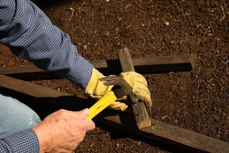 sturdy: A homeowner constructs a sturdy trellis for his garden. Stock Photo