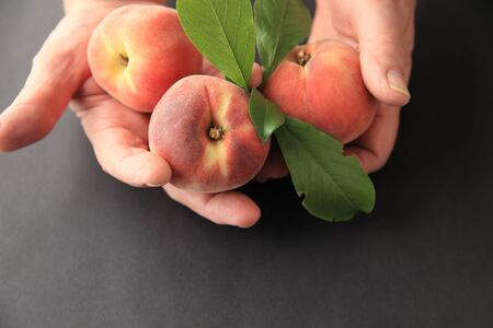 peach: A man holds three ripe peaches with leaves and space for copy