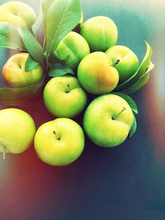 chartreuse: Ripe plums with leaves, glow and copy space
