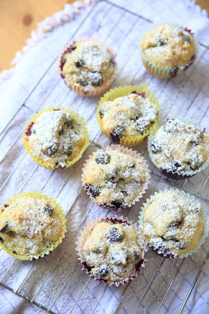 Blueberry muffins, just out of the oven, sprinkled with powdered sugar