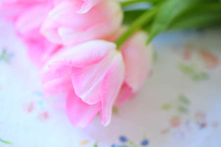 feminine beauty: Pale pink tulips on a floral fabric print