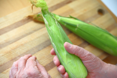 intact: An older man holds an ear of corn with its husk intact with copy space
