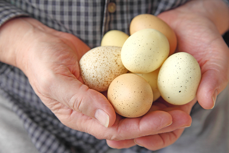 A man holds several speckled eggs in both hands.