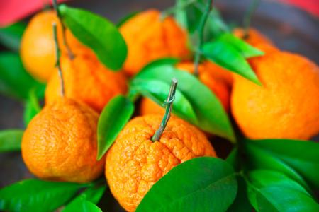 Fresh citrus fruit and foliage