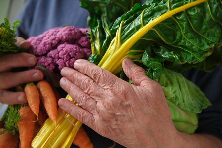 Older man with an armful of fresh vegetables from a farmers market Banque d'images