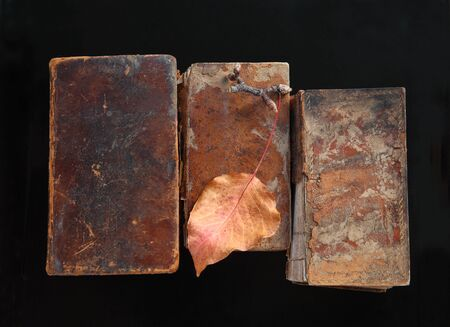 Crumbling old books with an autumn leaf on black Banque d'images
