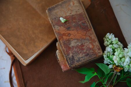 Three old books, one leather bound, with fresh white lilacs Banque d'images