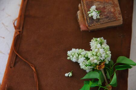 Old books, one leather-bound, with white lilacs and copy space Banque d'images