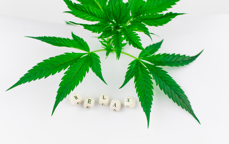 To relax from marijuana. A marijuana bush and the word relax from cubes on a white background. Stock Photo