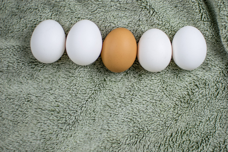 Chicken eggs of a gray tissue surface. One is brown, the others are white. Concept: not like everyone else. Stock Photo