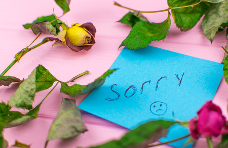A paper with the inscription: Sorry. On a wooden background with a dry rose and leaves.