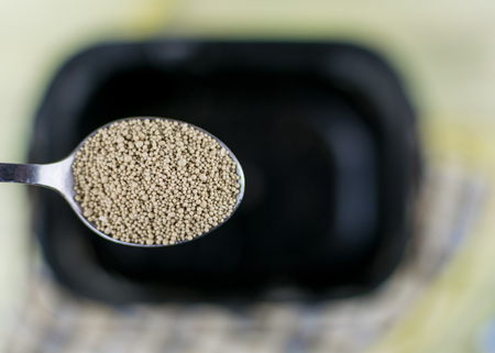 A spoonful of dry yeast for making bakery products Stock Photo