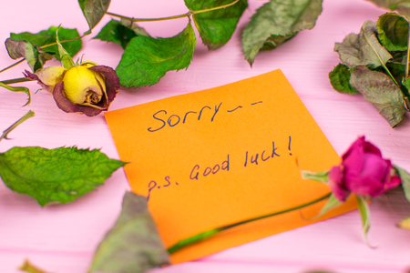 A paper with the inscription: Sorry. Good luck.  On a wooden background with a dry rose and leaves. Stock Photo