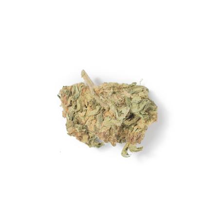 A bud of marijuana on a white background. Isolated. Stock Photo