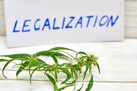 Legalization word with leaf of marijuana, cannabis on a light background.