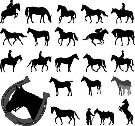 horses collection - vector Vector