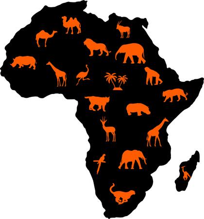 african animals - vector Vector