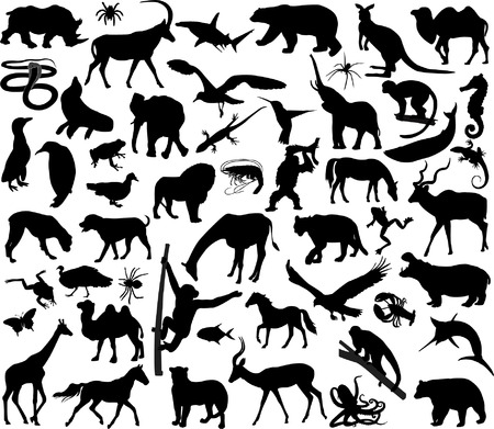 animals silhouettes - vector Vector