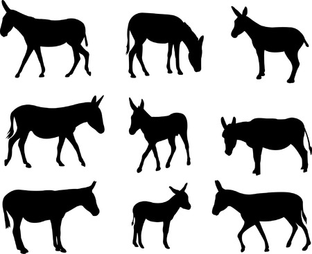 donkeys silhouettes - vector Illustration