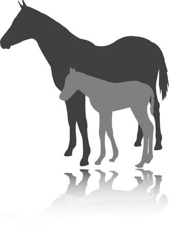 a cavallo con puledro - vector Vettoriali