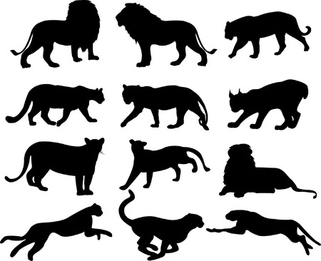 big cats silhouette collection - vector