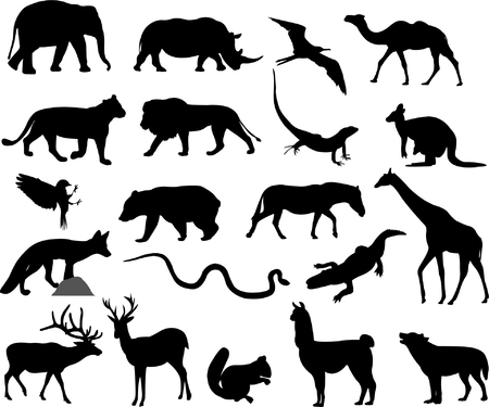 animals silhouettes  Stock Vector - 6660406