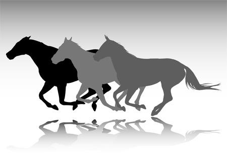 caballos salvajes en ejecución  Ilustración de vector