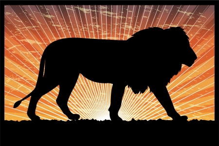 lion silhouette on the abstract background  Vector