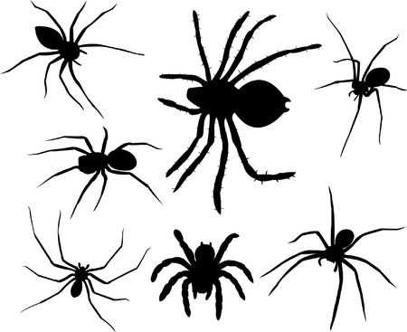 arachnids: spiders silhouettes collection  Illustration