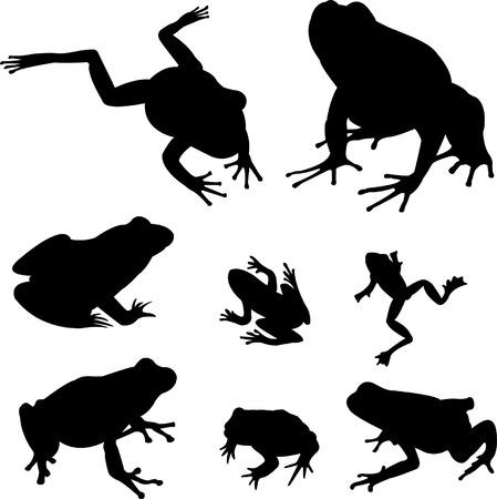 frosch: Fr�sche-Silhouetten-Auflistung  Illustration