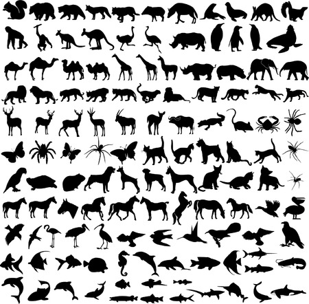 125 high quality different animals silhouette  Vector