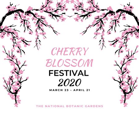 Cherry blossom event template with hand drawn branch with pink cherry flowers blooming.  Sakura blossoming festival banner. Chinese or Japanese traditional drawing. Vector. Ilustracja