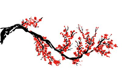 Cherry blossom hand drawn branch with red cherry flowers blooming.  Sakura blossoming twig isolated on white.  Chinese or Japanese traditional drawing. Vector.