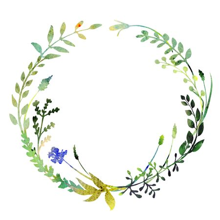 Watercolor wreath.  Made of field meadow herbs, plants, twigs. Summer design. Hand painted round frame.  Circle herbal composition. Isolated on white. Great to frame texts, quotes and logos.