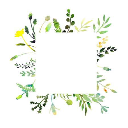 Watercolor frame.  Made of field meadow herbs, plants, twigs. Summer or spring design. Hand painted square foliage.  Herbal composition. Isolated on white. Great to frame texts, quotes and logos. Stockfoto