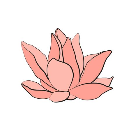Lotus flower . Water lily drawing. Flower silhouette.  Hand drawn flower symbol. Vector illustration isolated on white. 일러스트