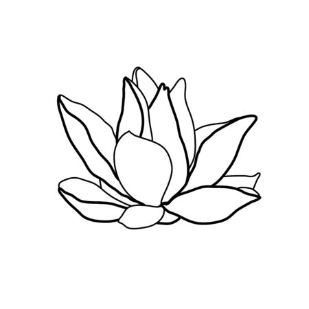 Lotus flower . Water lily drawing. Flower silhouette.  Hand drawn flower symbol. Thin line drawing. Vector illustration isolated on white.