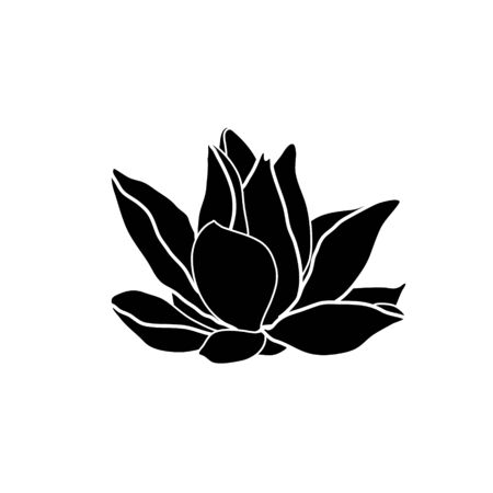 Water lily drawing. Flower silhouette.  Hand drawn flower symbol. Vector illustration isolated on white.