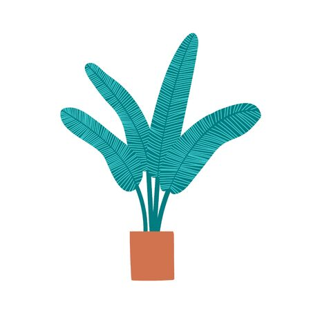 Palm tree house plant drawing.  Hand drawn flat cartoon illustration. Isolated on white. Vector Ilustração