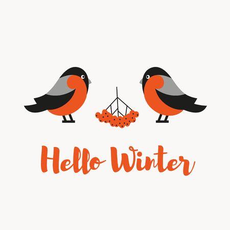 Robin birds with rowan berries. Hello winter design. Winter illustration in simple flat cartoon style. Vektorové ilustrace