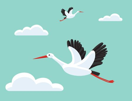 Storks flying in sky. Bird as symbol for baby shower, delivery, news, pregnancy. Beautiful background. Colorful vector illustration. Vector Illustration