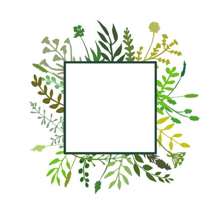 Square floral frame great to place any text, quote . Border made of hand drawn greenery, flowers, twigs, herbs. Square banner design great for spring or summer rustic theme. Vector