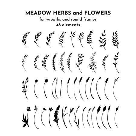 Wild flowers, meadow herbs, field plants. Silhouettes set. Twigs and branches bundle. Botanical drawing. Vector illustration isolated on white.