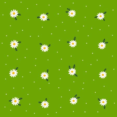 Daisy seamless pattern on dotted green background. Floral ditsy print with small white flowers and leaves. Chamomile design. Vector